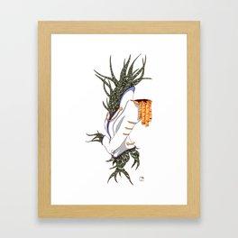 Haworthia Fasciata Framed Art Print