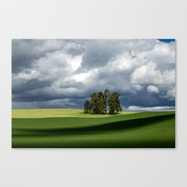 Tree Group in Green Field Canvas Print