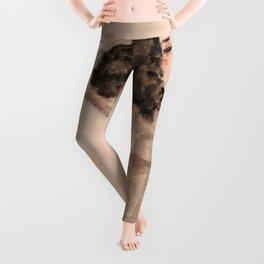 Egon Schiele - Black-Haired Girl with Lifted Skirt Leggings