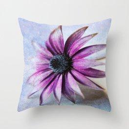 Osteospermum Delight Throw Pillow