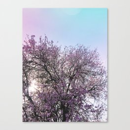 Spring Floral 2 Canvas Print