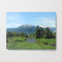 Juneau in Green Metal Print