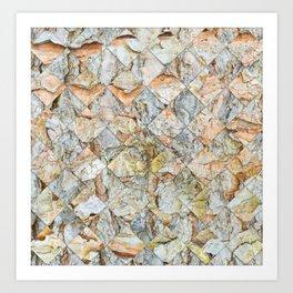 Pine bark pattern in diamonds shapes Art Print