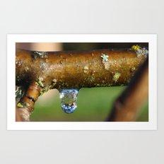 Rain Drop Art Print