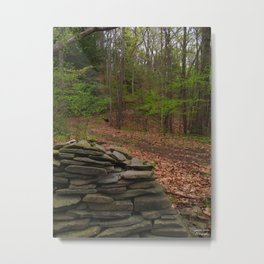 Mysterious Trails Metal Print