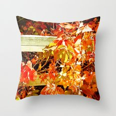 On The Fence About Fall Throw Pillow