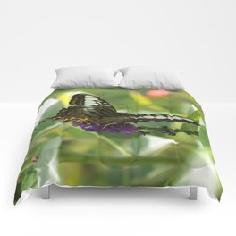 Blue Clipper Butterfly 2 Comforters