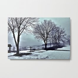 Winter Trees by the Lake Metal Print
