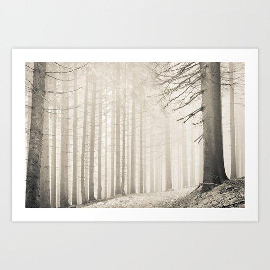 pale winter forest II Art Print