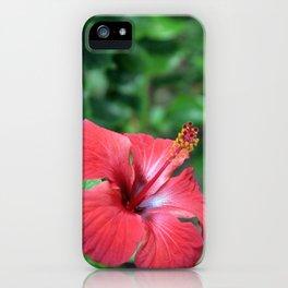 Hibiscus I iPhone Case