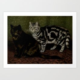 Vintage Short-Haired Cats Painting (1903) Art Print