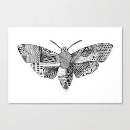 Death Head Moth Canvas Print
