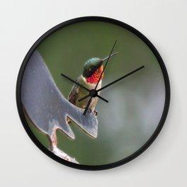 Frisky Hummer Wall Clock