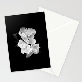geranium in bw Stationery Cards