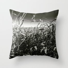 Cornfield Number 2 Throw Pillow