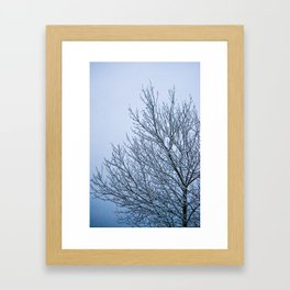 Frozen Nature Framed Art Print