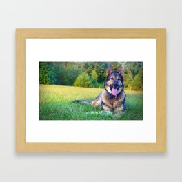 Hiro German Shepard Framed Art Print