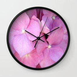 Close Up of Pink Hydrangea Blossom Wall Clock