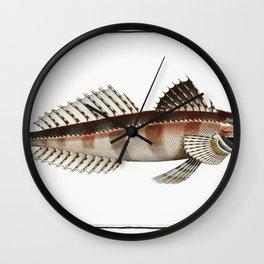 Graswang in Bavaria Riverbed Linder Germany Wall Clock