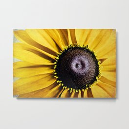 hello sunshine Metal Print