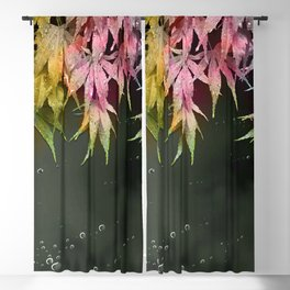 Acer Leaves Blackout Curtain