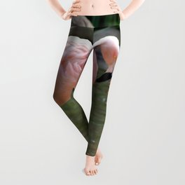 Chilean Flaming Leggings