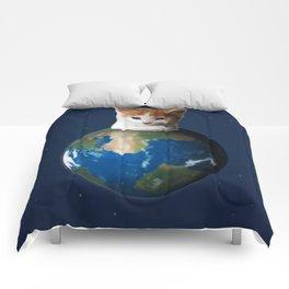 Kitten on the Earth Comforters