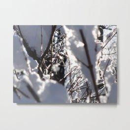 Glitter Reeds Metal Print