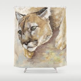 Captivated Mountain Lion Shower Curtain
