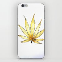 cannabis iPhone & iPod Skins featuring Golden Cannabis by  Can Encin