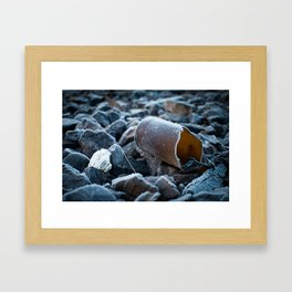 A Cold One Framed Art Print