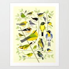 New World Warblers 1 Art Print