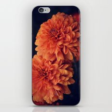 If A Flower Was The Sun iPhone & iPod Skin