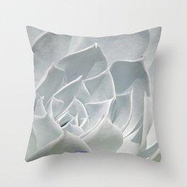 Succulent in the Sun Throw Pillow