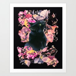 Black Cat and Pretty Flowers Art Print