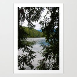 trees and beyond Art Print