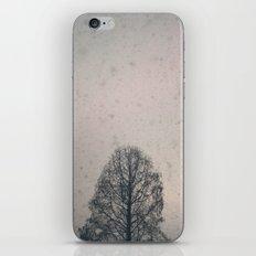 winter redux iPhone & iPod Skin
