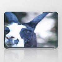 llama iPad Cases featuring Llama by Veronica Ventress