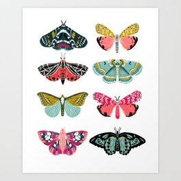 Moths - white background, moth print, moth art, moth sticker, moths, moth art Art Print