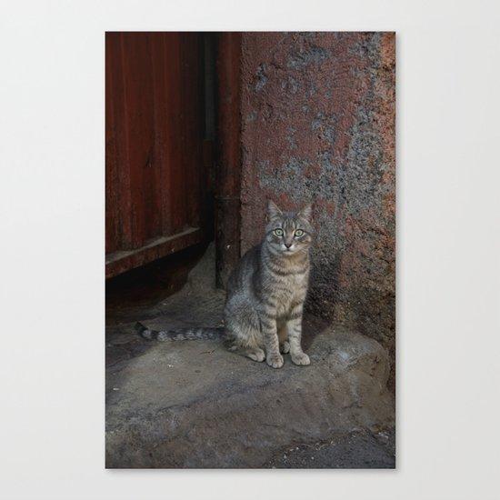 Marrakesh Cat Canvas Print
