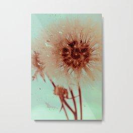 blowing dandelion XI Metal Print