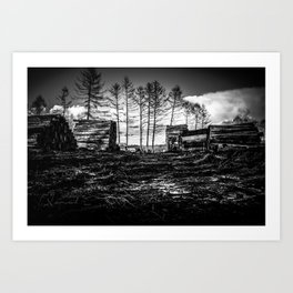 Poltery Site (Wood Storage Area) After Storm Victoria Möhne Forest bw Art Print