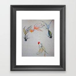 Goldfish Pond (close up #8) #society6 #decor #buyart Framed Art Print