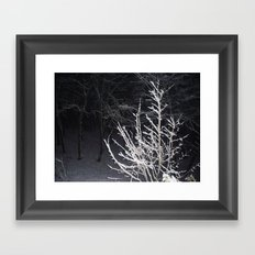 Snow Branches Framed Art Print