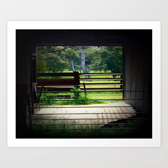 Framing a cattle Shed Art Print