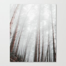 into the woods I go to find my soul Canvas Print