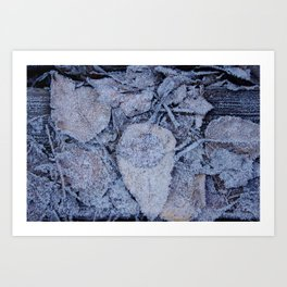 Frost & Leaves Art Print