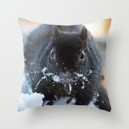 Black squirrel in snow Throw Pillow