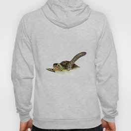 Sea Turtles Hoody