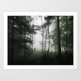 Misty Morning in the Woods of Cades Cove Art Print
